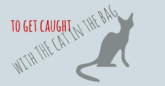 to get caught with a cat in the bag